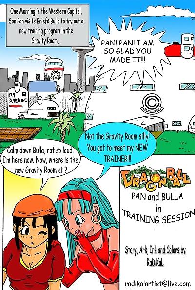 Dragon Ball- Pan And Bra�s..